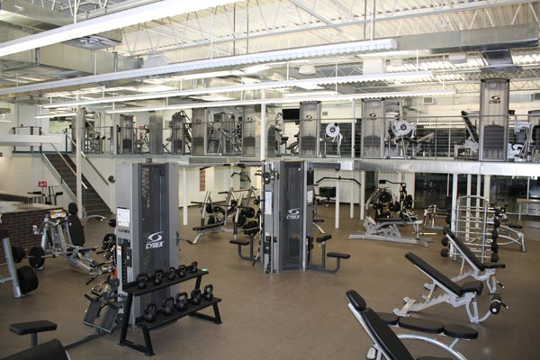 Southhampton Gym View Equipment